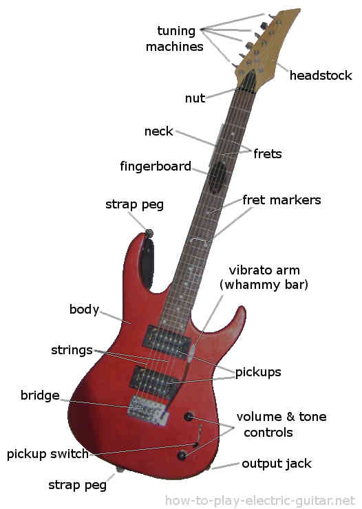 electric guitar parts, diagram and structure